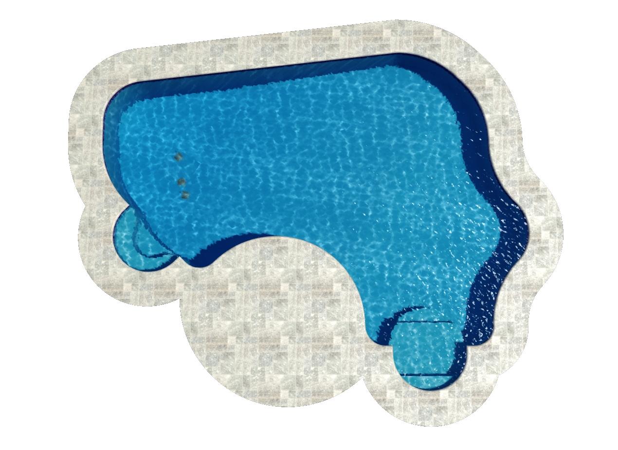 Natural Spring Ell Pool Shape
